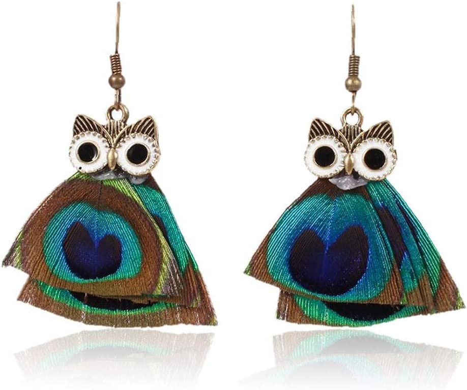 1pc Tassel Clip on Earrings Non-Pierced Rainbow Owl Dangle Art Decor for Women Girls