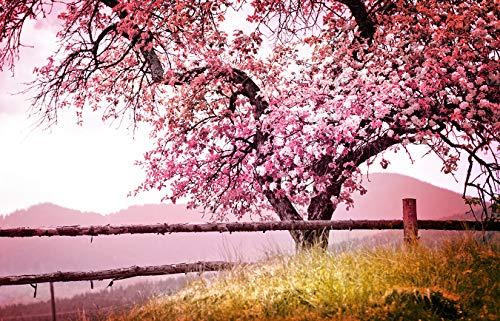 Fototapete selbstklebend | Frühlingsbaum | in 310x200 cm | Bild-tapete Moderne Wand-deko Dekoration Wohnung Wohnzimmer Wandtapete rosa pink | 501260