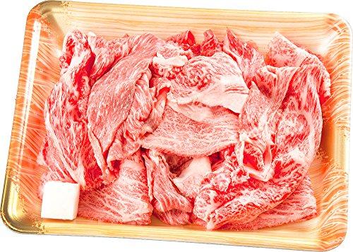 【肉のひぐち】 飛騨牛 切り落とし肉 (250g(250g×1パック)) 国産 牛 冷凍 お試し 牛肉 切り落とし 訳あり 牛丼 すき焼き お弁当などに 和牛 こま切れ