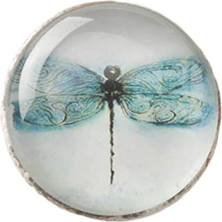 Kylin Express Creative Drawer/Cabinet Pull Handles Alloy Cabinet Knobs, Blue Dragonfly