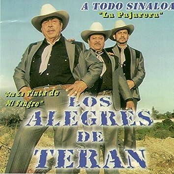 A Todo Sinaloa