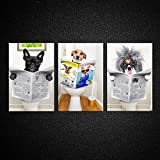 Kreative Arts Funny Animals Canvas Prints Dog Reading Newspapers on Toilet Wall Art Modern Cute Animal Artworks Gallery Canvas Wrap Giclee Print Stretched Ready to Hang for Bathroom Decor