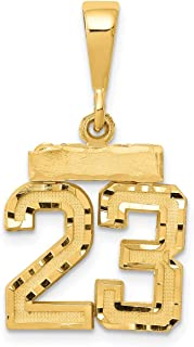 Lex & Lu 14k Yellow Gold Small D/C Number 23 Charm