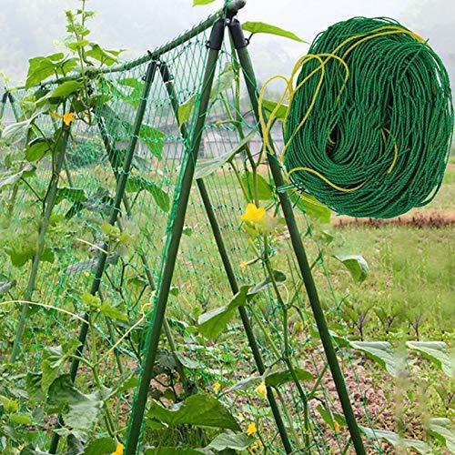 TQ Garden Green Vegetable Plant Trellis Netting Support Nets Bean Plant Climbing Grow Fence Anti-bird Net