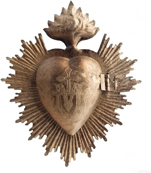 心脏心脏的心脏脉脉冲石脉瓣跳动