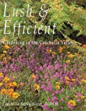 Lush & Efficient: A Guide to Gardening in the Coachella Valley