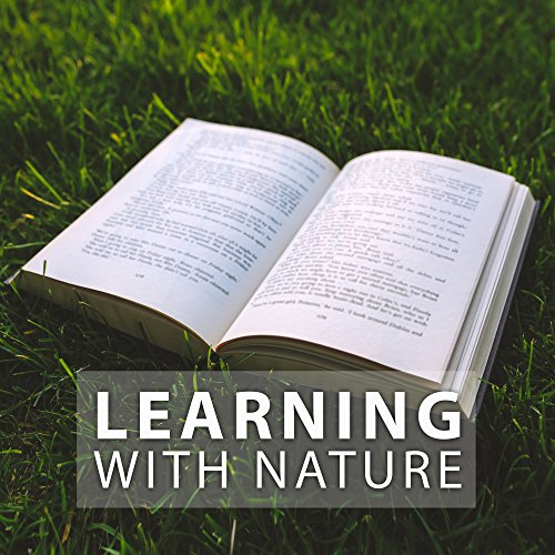 Learning with Nature – Calm Music to Study, Focus on Task, Reading Books, Nature Sounds for Better Concentration