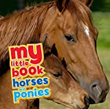 My Little Book of Horses and Ponies...