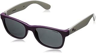 P0300S Polarized Wayfarer Sunglasses