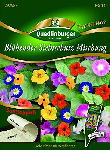 ST Blühender Sichtschutz QLB Premium Saatgut Blumenmischung