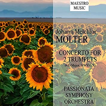 Molter: Concerto For 2 Trumpets In D Major, MWV 6.30