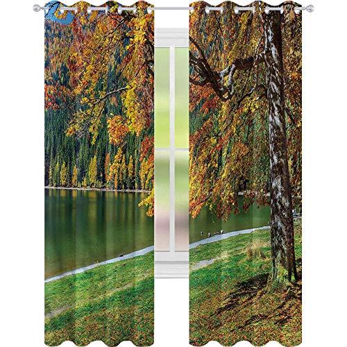 Cortinas opacas para dormitorio, árbol, lago europeo, madre tierra, 52 x 63, cortinas decorativas para sala de estar
