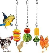 2Pcs Chicken Treat Holder Vegetable Hanging Shape Stainless Steel Feeder