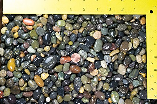 3 Lbs Large Beach Pebbles for Bonsai Tree Humidity Tray and Zen/Fairy Garden