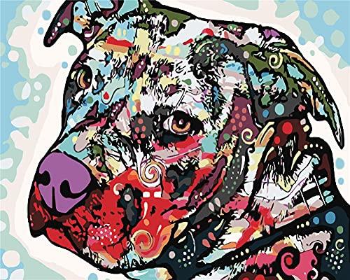 Dipingere con i Numeri Adulti,(20x26in)DIY Kit Pittura a Olio Digitale di Tela con Pennelli e Pigmento Acrilico per Donne Mamma Figlia Natale Decorazione della Casa Regalo Cane animale colorato Framed