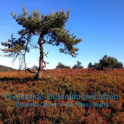 Technoide Heidelandschaften (Baumlos beatet der Bassbums)