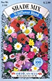 American Seed Shade Mix, Wildflower Blend, 100 Square Foot Shaker Box (2 Ounce)
