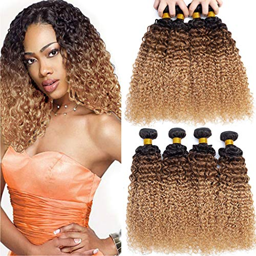 ELEE'S HAIR Ombre Cheveux Brésiliens Crépus Bouclés Cheveux Humains Bundles Vierge Cheveux Humains Bundles Ombre Cheveux Humains Weave 4 Bundles (1B/30/27 18 20 22 24)