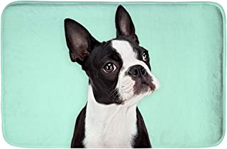 Best boston terrier bath mat Reviews
