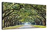 Large Green Trees Wall Art for Bedroom Living Room Decoration Modern Nature Picture Prints Canvas Artwork Forests of Oak Lined Road at Historic Wormsloe Plantation Savannah Georgia 24' x 48'