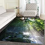 Rainforest Customize Floor mats for Home Mat Stream in The Jungle Stones Under Shadows of Trees Sun Rays Mother Earth Theme Oriental Floor and Carpets 3'x5' Green White