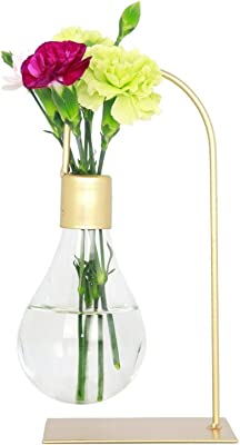 Jack's Gift Glass Flower Vase, Modern, Minimalist, Gold Metal Stand, Decorations for Home, Wedding, Living Room, Office