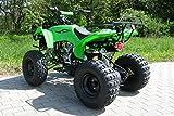 Kinder Quad 125 ccm grün Warrior - 7
