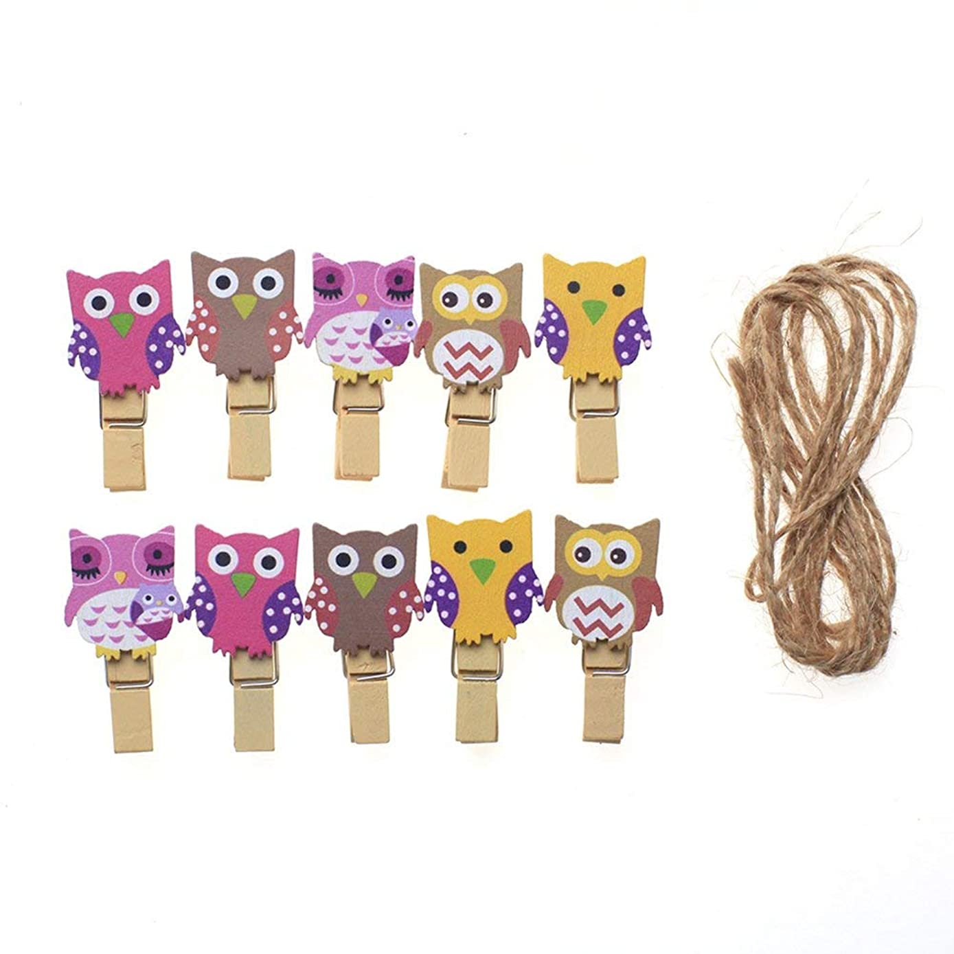 Teydhao DIY 30 Pcs Colorful Mini Photo Clips Natural Wooden Pegs for Photo Clothespins with Jute Twine Clips Clothes Mini Owl Decoration Hanging Photos Art Craft Picture for Bedroom Wall Kids Room