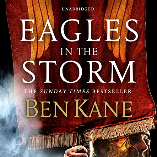 Eagles in the Storm Titelbild