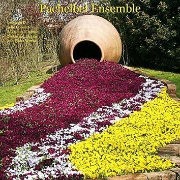 Pachelbel, Vivaldi, Rinaldi, Albinoni, Bach, Schubert: Canon in D, Cello Concerto, Adagio in G minor, Orchestral, Organ and Piano Works