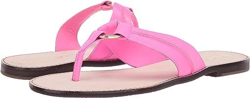 Pink Tropics