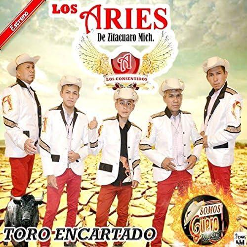 Los Aries De Zitacuaro Mich