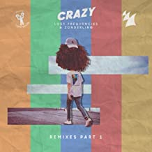 Best crazy remix lost frequencies Reviews