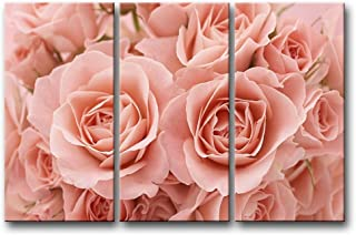 So Crazy Art - Canvas Print Wall Art Painting For Home Decor,Pink Roses 3 Pieces Panel Paintings Modern Giclee Stretched And Framed Artwork Oil The Picture For Living Room Decoration,Flower Pictures Photo Prints On Canvas