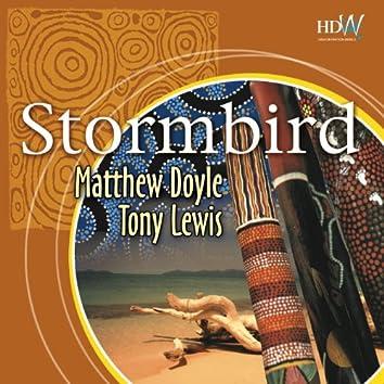 Stormbird