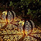 2 Pack Lanterna Solare da Giardino, OxyLED Lampada Solare da...