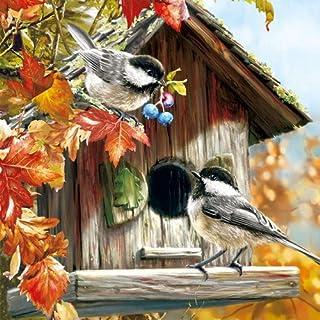 5 Servietten Vogelhaus Vogel Vögel Serviettentechnik Motivservietten Birdhouse