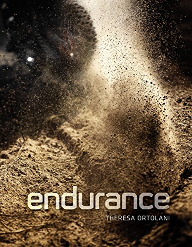 Endurance: Down and Dirty Off-Road Racing
