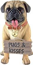 Large Pug Dog Love 11