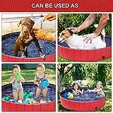 Doggy Pool das Planschbecken für  Hunde (160*30cm) - 8