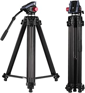 Best hollywood brand tripod Reviews