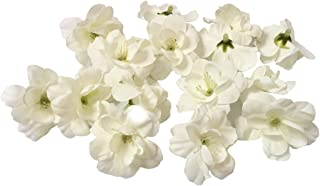 Cherry Blossom Flower Heads, 100pcs Colorfulife Artificial Silk Flower Head Petals Bridal Shower Favors for Wedding Party Supplies Table Floor Decoration Centerpieces Home Decorative (White)