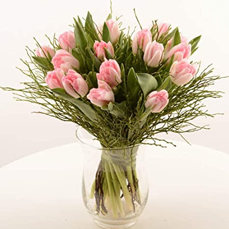 100 St/ücke Blumen Wasserr/öhrchen Kunststoff Orchideenr/öhrchen mit Deckel 7 cm L/änge Gobesty Blumenr/öhrchen Fl/äschchen Blume Wasserbeh/älter f/ür Blumenarrangements Geeignet