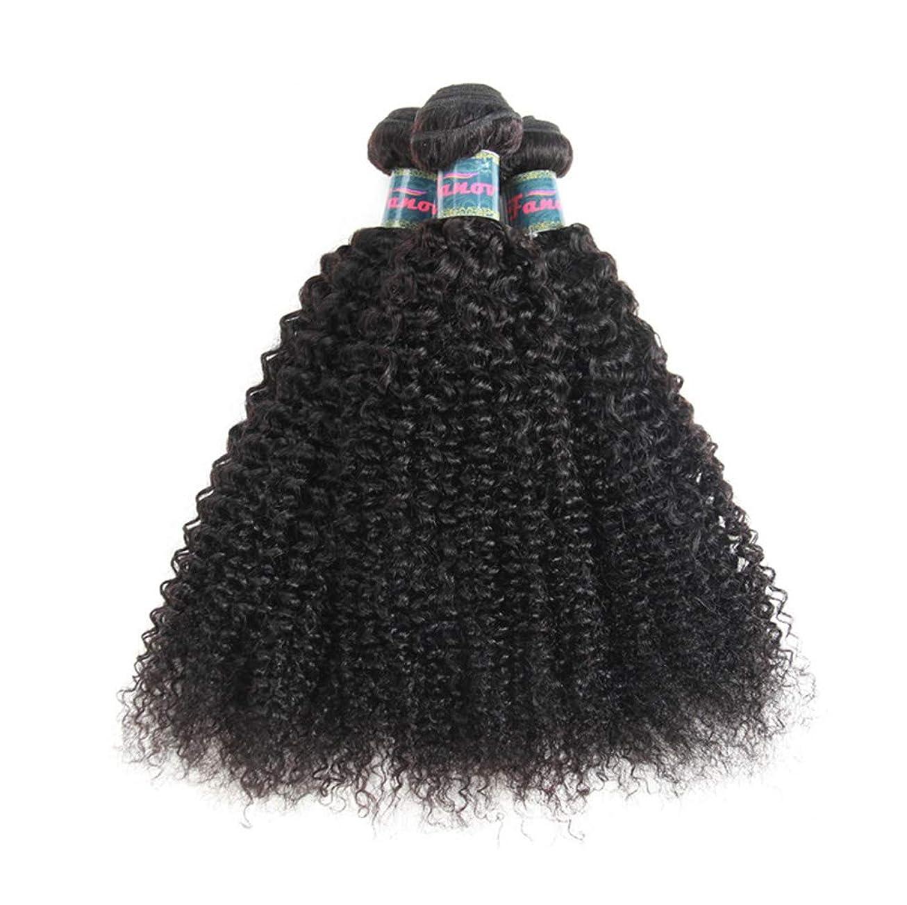 熱心兵隊ベックス髪織り未処理ブラジルの深い巻き毛の束本物の人間の髪の毛の束バージンブラジルの髪