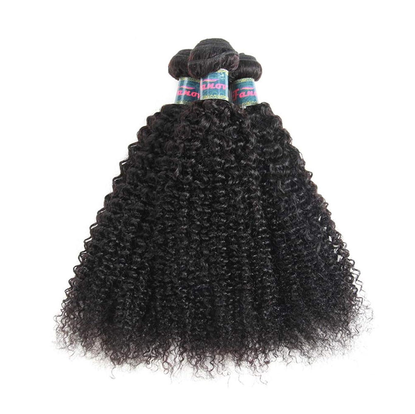 親愛な変換するアンプ髪織り未処理ブラジルの深い巻き毛の束本物の人間の髪の毛の束バージンブラジルの髪