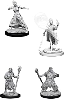 Dungeons /& Dragons-Nolzur/'s Marvelous Miniatures Earth Genasi Male Fighter W4