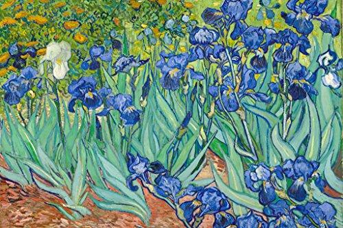Vincent Van Gogh Irises 1890 Dutch Post Impressionist Landscape Painting Cool Wall Decor Art