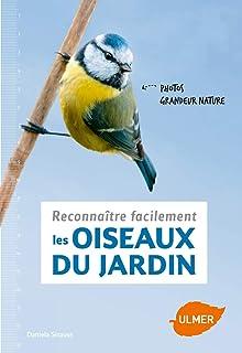 Reconnaître facilement les oiseaux du jardin - Photos grandeur nature