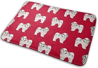 """Shih Tzu Dogs Shih Tsu Dogs - Reed_17902 Doormat Entrance Mat Floor Mat Rug Indoor/Outdoor/Front Door/Bathroom Mats Rubber Non Slip 23.6"""" X 15.8"""""""