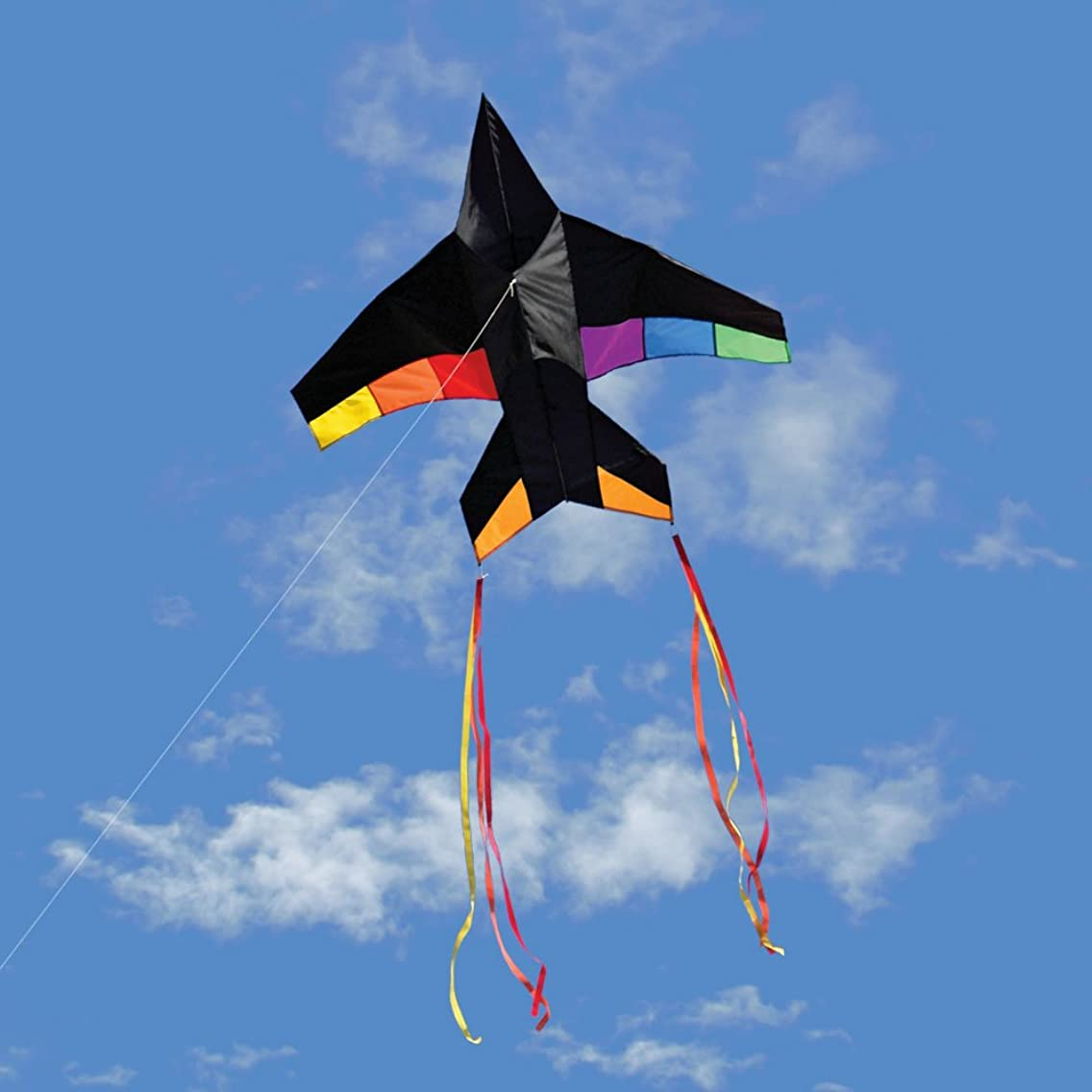Into The Wind Rainbow Jet Plane Kite with Tails